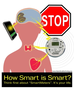 SmartMeterPoster-KathyBoake2